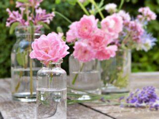 美容研究家が選ぶ秋冬の乾燥対策に使いたいおすすめ保湿美容液